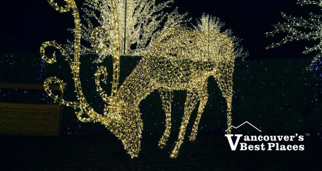 Enchant Christmas Deer