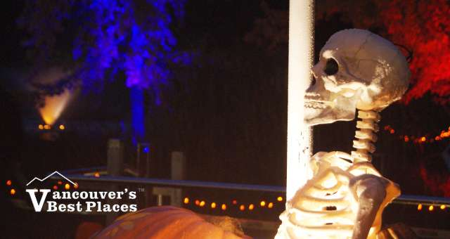 VanDusen Halloween Skeleton