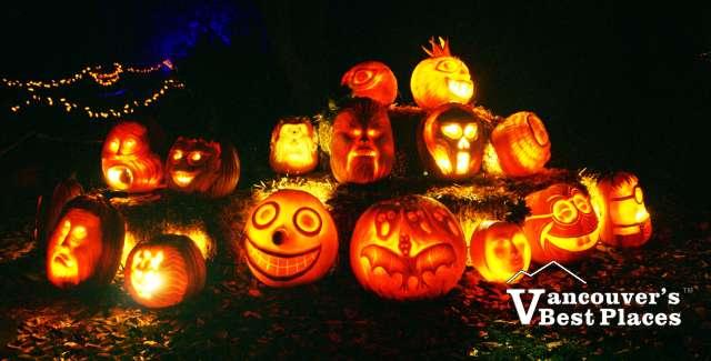 VanDusen Pumpkin Illuminations