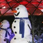 Snowmen at the Bloedel Conservatory
