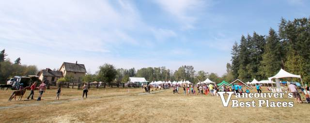 Campbell Valley Regional Park Country Celebration