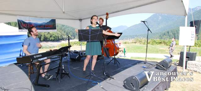 Hummingbird Trio at Music in the Park