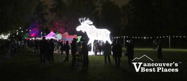 Light Displays at Surrey Light Festival