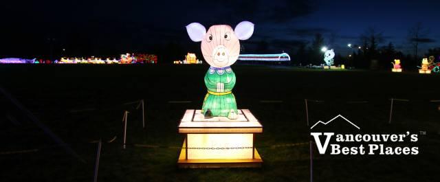 Art of Lights Pig Lantern