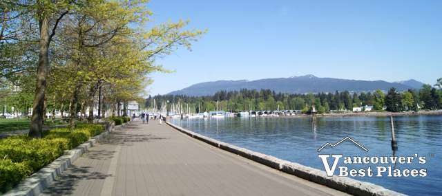 Coal Harbour Seawall in Spring