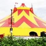 Royal Canadian Circus at Guilford Town Centre
