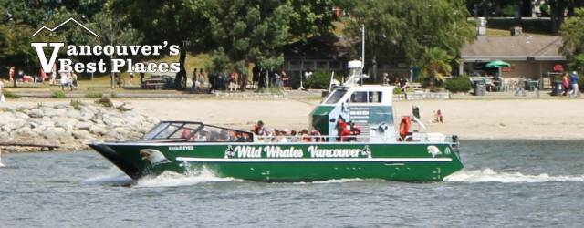 Wild Whales Vancouver Boat