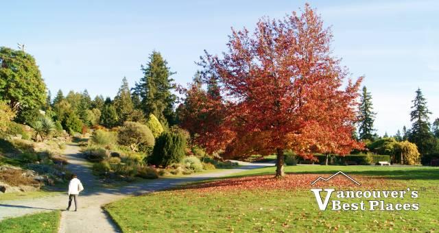 UBC Botanical Garden in Autumn