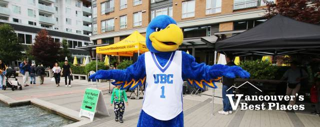 UBC Thunderbirds Mascot at Wesbrook Village