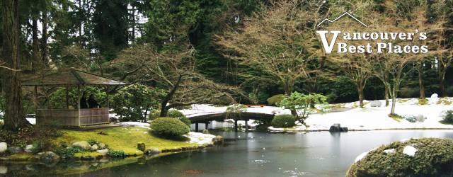 Winter at Nitobe Garden