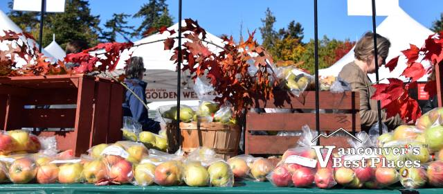 UBC Apple Festival