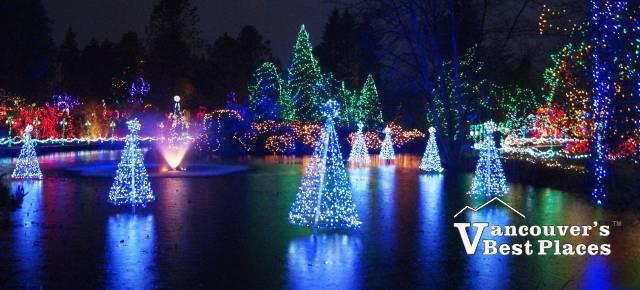 Trees on VanDusen Lake at Christmas