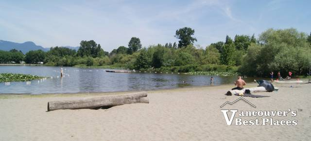 Trout Lake at John Hendry Park