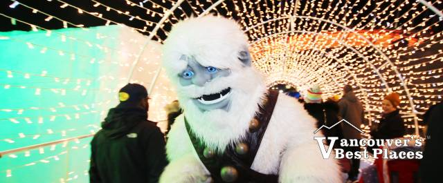 Yeti in Aurora Light Tunnel