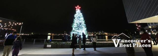 North Vancouver's Lower Lonsdale Christmas Tree