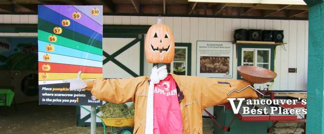 Applebarn Pumpkin Scarecrow