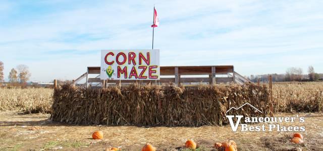 Richmond Country Farms Corn Maze