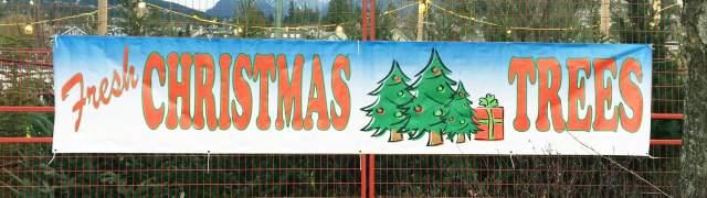 Fresh Christmas Trees Sign