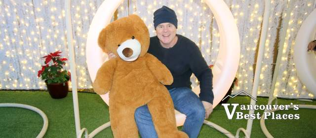 LED Swing and Teddy Bear Photo Opportunities