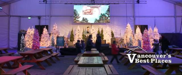 Live Entertainment at Aurora