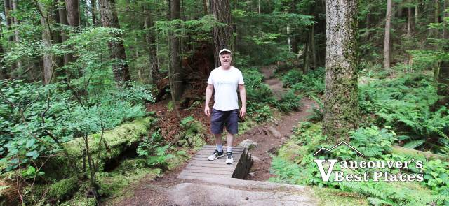Mt. Seymour Baden Powell Trail
