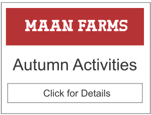 Maan Farms Autumn Activities