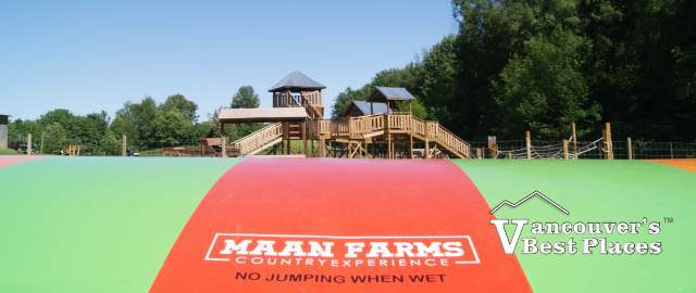 Maan Farms Sign and Pumpkins