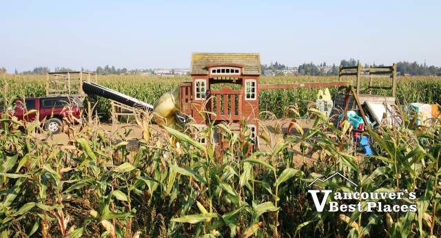 Bose Farm Corn Maze
