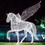 Pegasus at the PNE