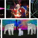 Vancouver's Top Christmas Things to Do