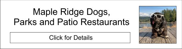 Maple Ridge and Dog-Friendly Places