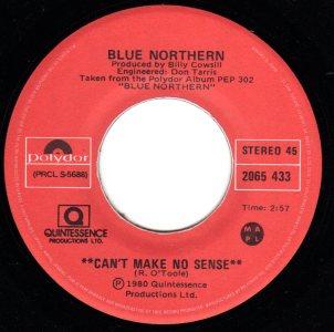 Can't Make No Sense by Blue Northern