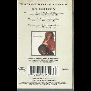 Dangerous Times by Sue Medley