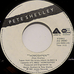 Homosapien by Pete Shelley