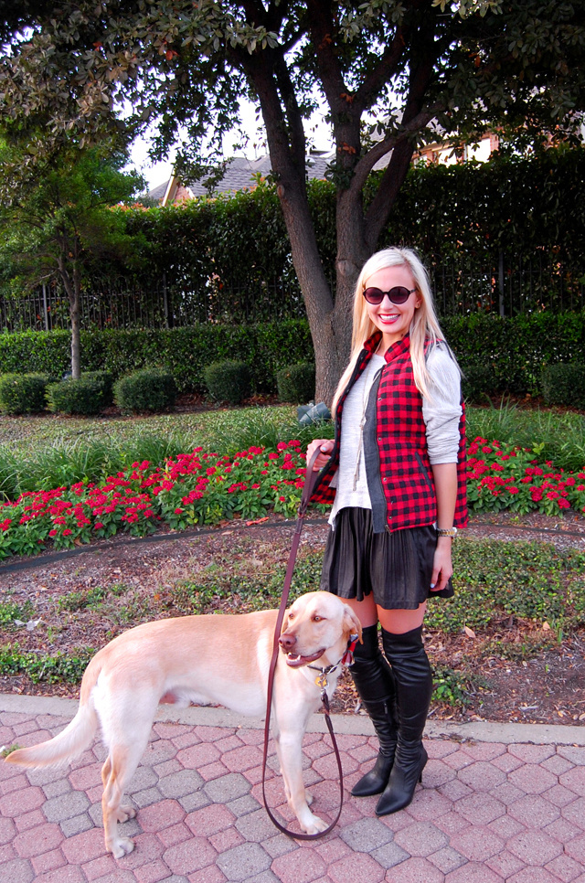 3-pitbull-awareness-dog-puppy-love-milk-and-honey-boutique-dallas-blog-vandi-fair-lauren-vandiver