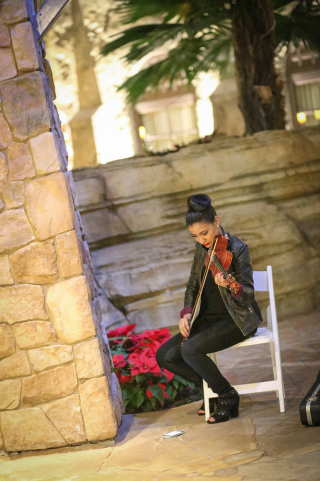 violinist-proposal