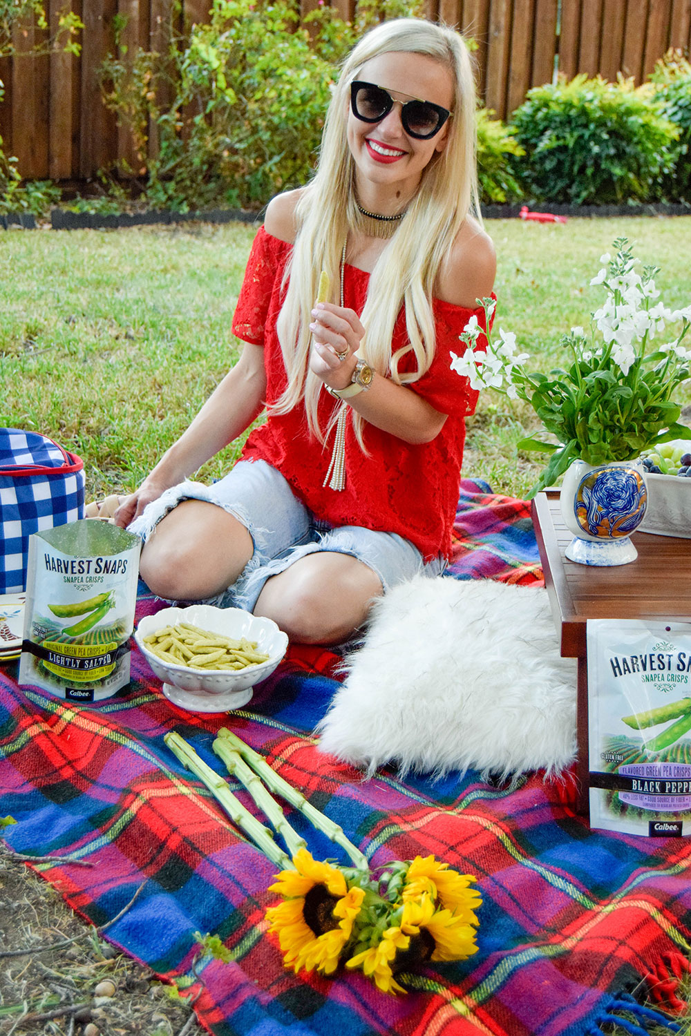 vandi-fair-dallas-fashion-blog-lauren-vandiver-southern-texas-lifestyle-fitness-blogger-healthy-snacking-snacks-harvest-snaps-snap-pea-crisps-picnic-12