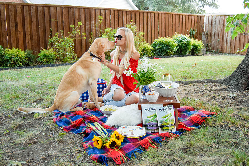 vandi-fair-dallas-fashion-blog-lauren-vandiver-southern-texas-lifestyle-fitness-blogger-healthy-snacking-snacks-harvest-snaps-snap-pea-crisps-picnic-18