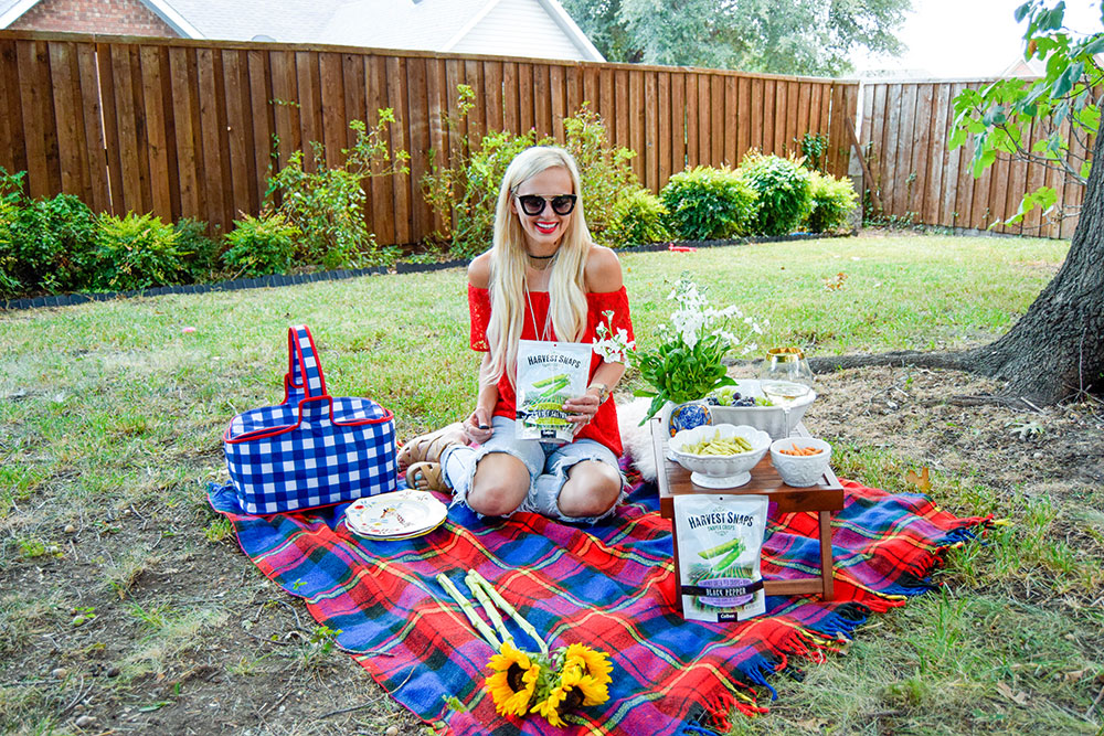 vandi-fair-dallas-fashion-blog-lauren-vandiver-southern-texas-lifestyle-fitness-blogger-healthy-snacking-snacks-harvest-snaps-snap-pea-crisps-picnic-7