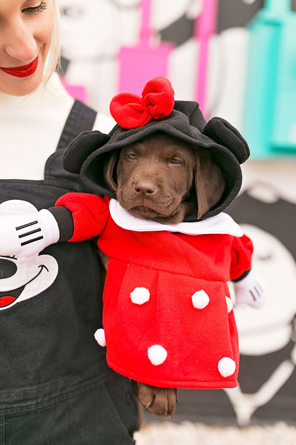 disney-minnie-mouse-puppy-dog-costume