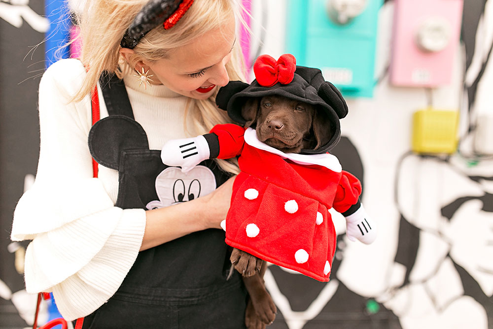disney-puppy-costume