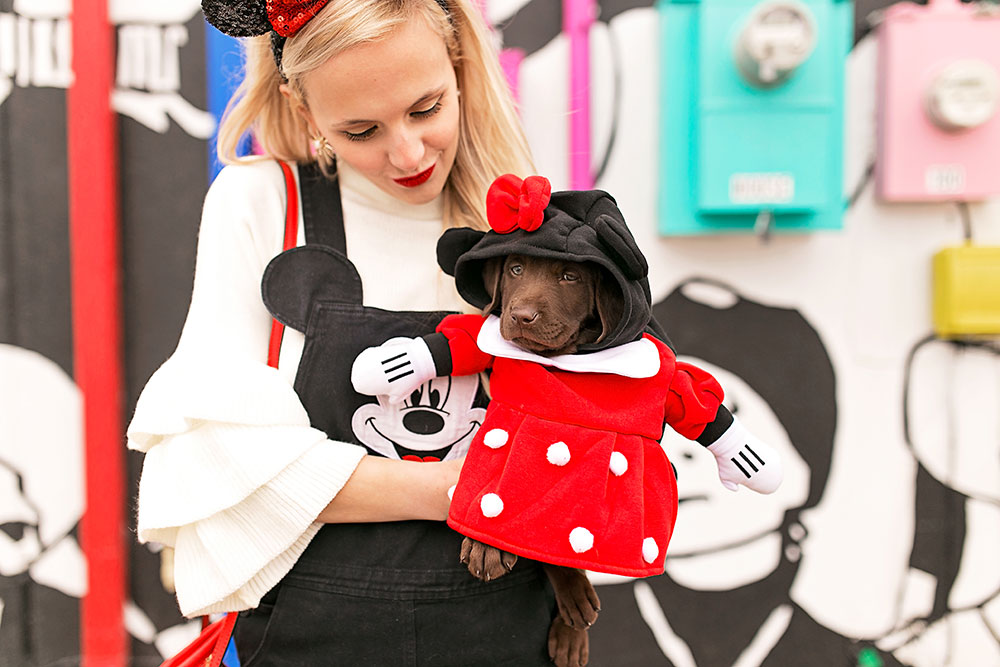 minnie-mouse-puppy-costume