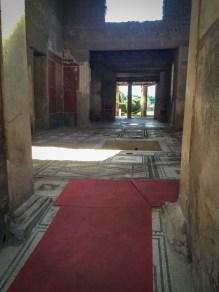 vandoggo-dog-travel-pompeii-2