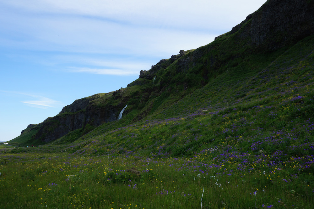 iceland_small_3312