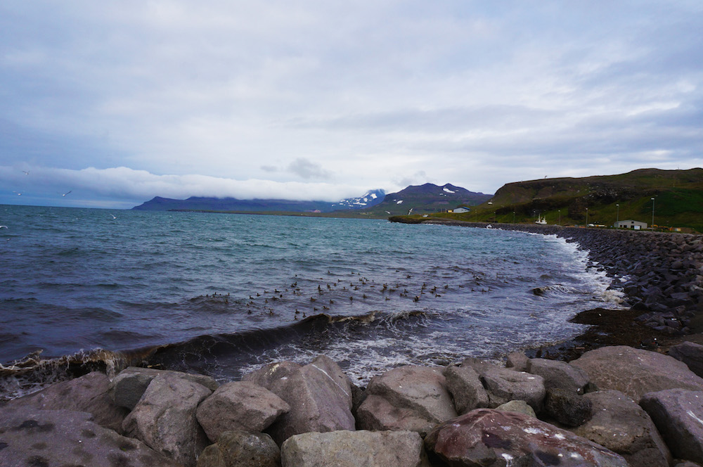 iceland_small_3548