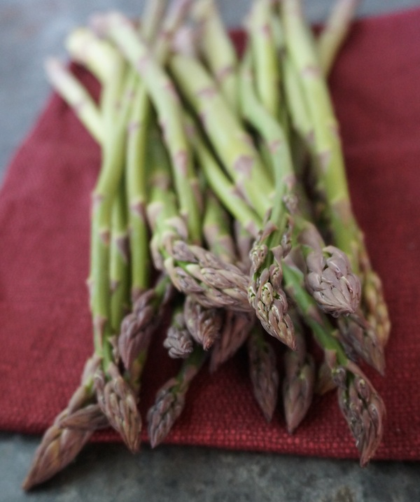 asparagus-red-1