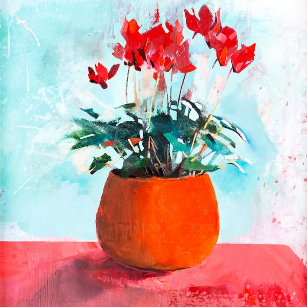 Aine-Divine-Cyclamen - My Favourite Orange