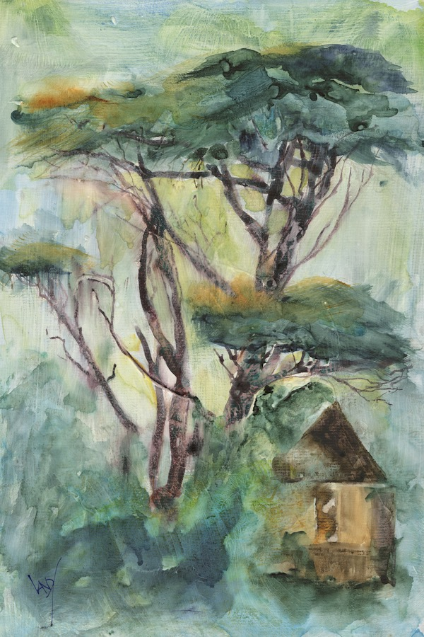 Painting trees and planting trees. Beautiful trees in Sintra