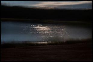 Viklund_01-83_Snapseed