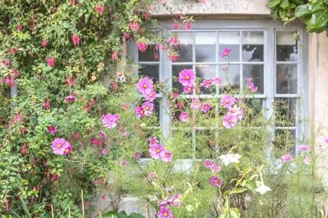 JoMalone_Bloomsbury_Garten